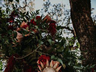 Venn Floral 1