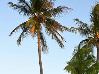 Island Life Events 4