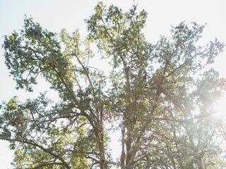 Mount Pisgah Arboretum 5