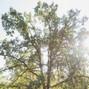 Mount Pisgah Arboretum 10
