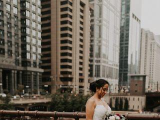 Anemone Chicago 4
