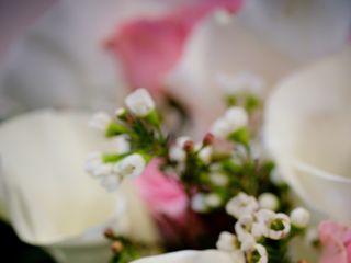 Studio 25 Wedding Photography 2