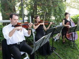 ViVa Strings Entertainment 5