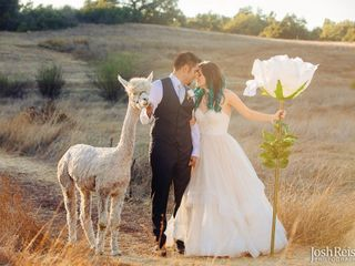 Forever & Always Farm Weddings 1