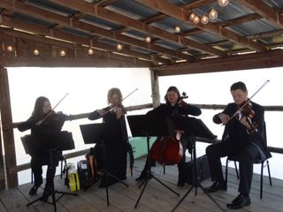 Anderson String Quartet 3