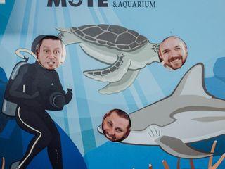 Mote Marine Laboratory & Aquarium 4