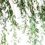 Bergerons Flowers 24