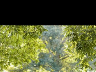 Capture Thirteen Photography 1