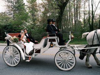 Carolina Horse and Carriage 3