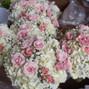 Leshers Flowers Inc. 17