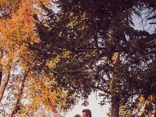 Laurel Tree Photography 3