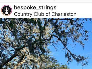 Bespoke Strings 3