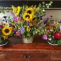 Sunfresh Flowers 20