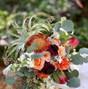 Violets In Bloom Florist 12