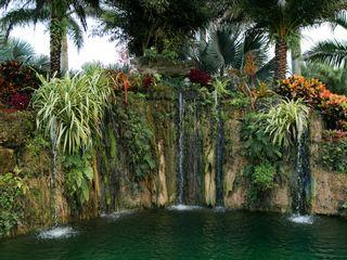 Longan's Place Miami / Redland 5