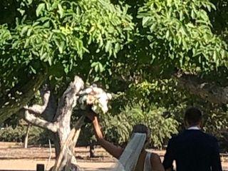 Walnut Grove At Tierra Rejada Farm 3