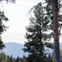 McCall Party Rentals 11
