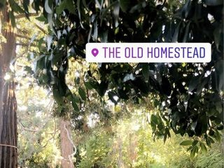 The Old Homestead 1