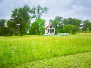 Tiny T Ranch 1