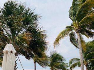 Playa Largo Resort & Spa 5