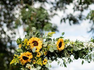 Harrington Flowers 1