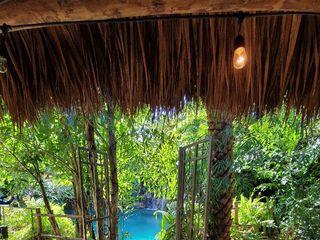 Secret Gardens Miami 1