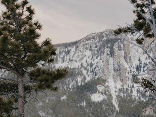 Vanilla Pine Photography 1