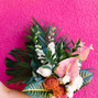 Lovely Peonies 14