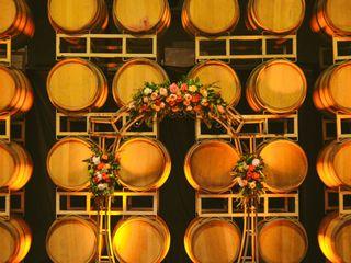Scribner Bend Vineyards 2