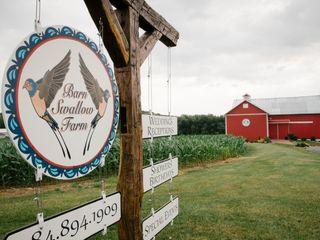Barn Swallow Farm 3