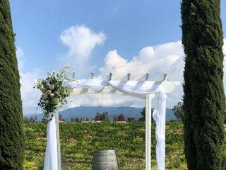 Bel Vino Winery 2