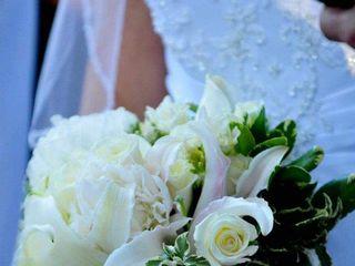 Gardenia Social 7