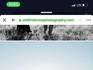 Wild Irish Rose Photography 4