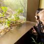 Saint Louis Zoo 10