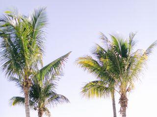 Hyatt Regency Coconut Point Resort & Spa 1