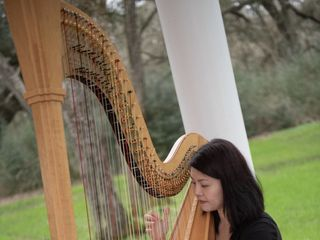Houston Harpist Echo Shen 1