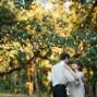 Mount Pisgah Arboretum 19