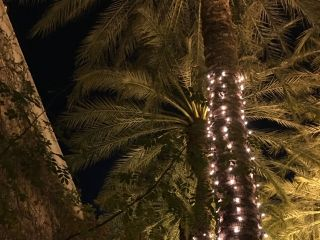 Arizona Grand Resort & Spa 5