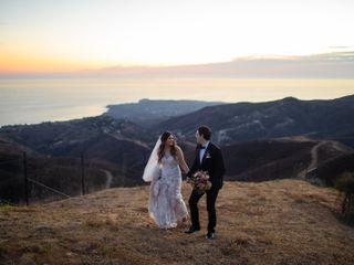 Malibu Solstice Vineyards 2
