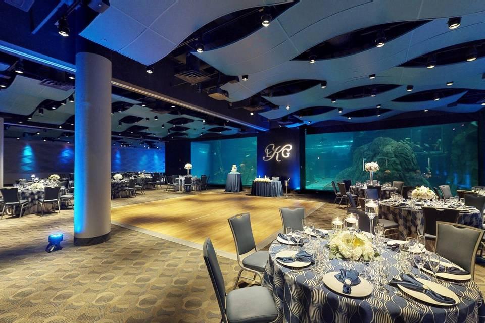 Adventure Aquarium 3d tour