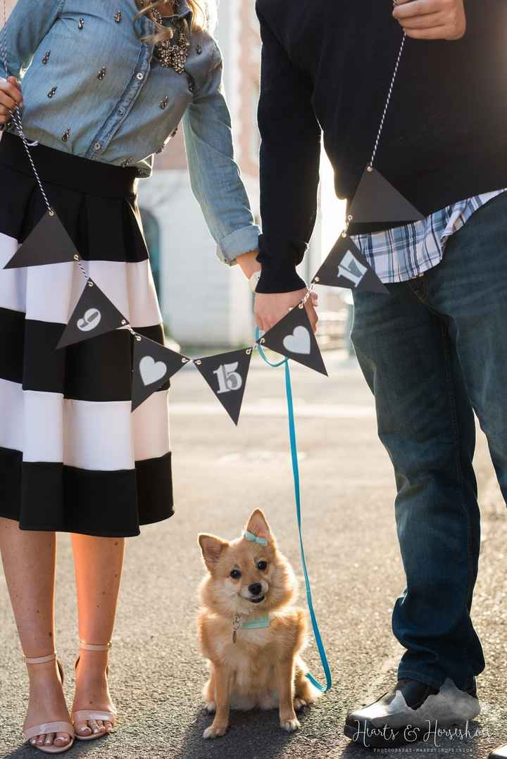 Engagement pictures with doggies