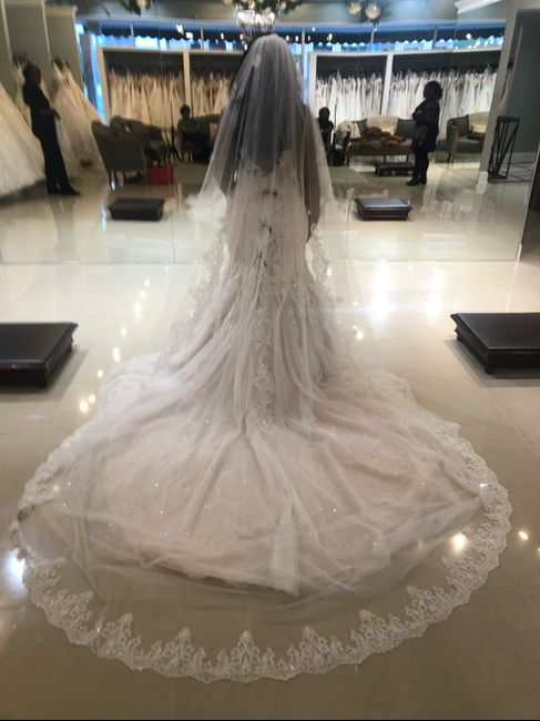 i found my dress!! Debating on getting reception dress-thoughts? - 2
