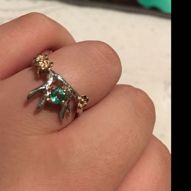 Who else has gemstones in their ring(s)?  Let's see them! 14