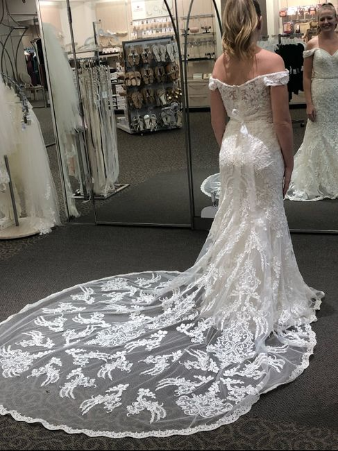 Dress Help! Please post your gowns!! 6