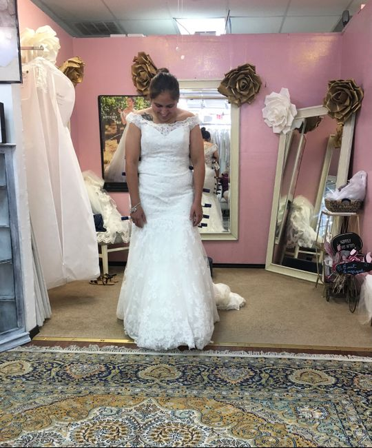 First fitting - 3