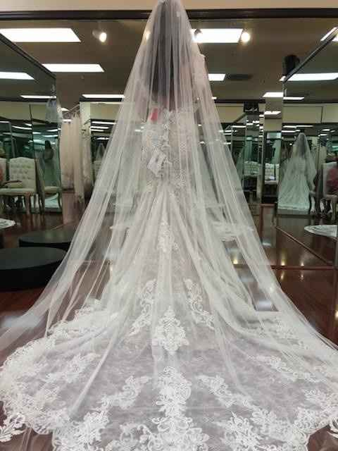 yes to the Dress!! - 2