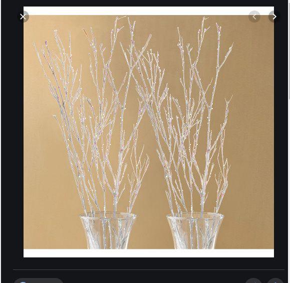 Alternative to flowers 2