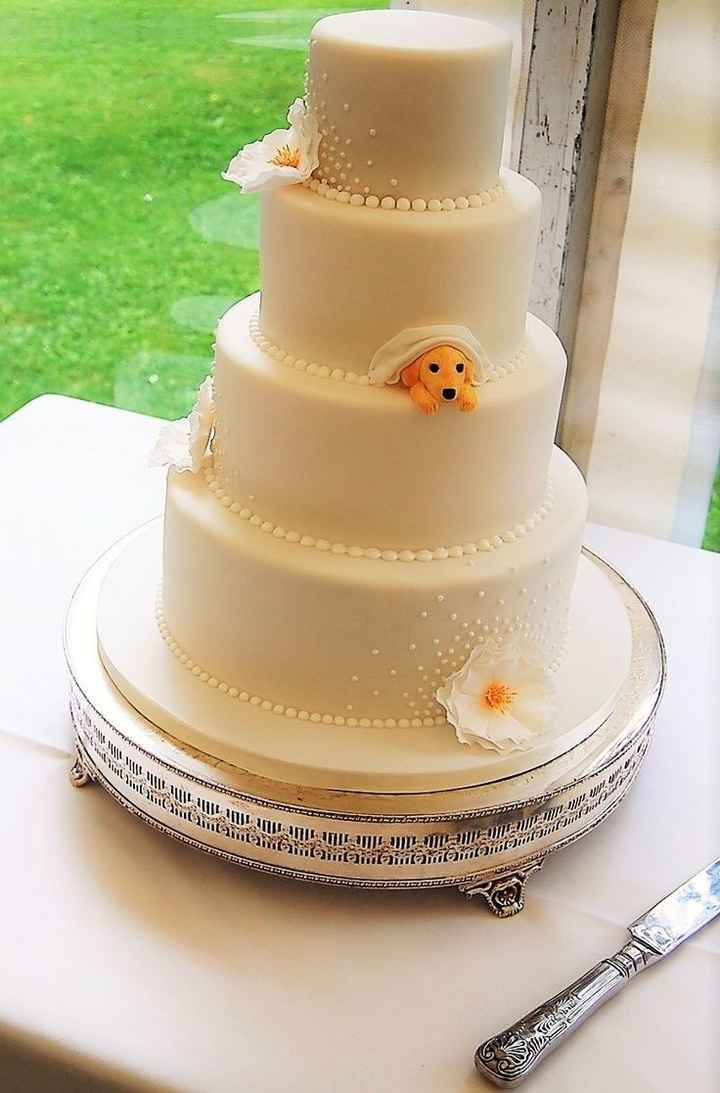 Are You Including Your Pets In Your Wedding? 🐶🐱 - 1