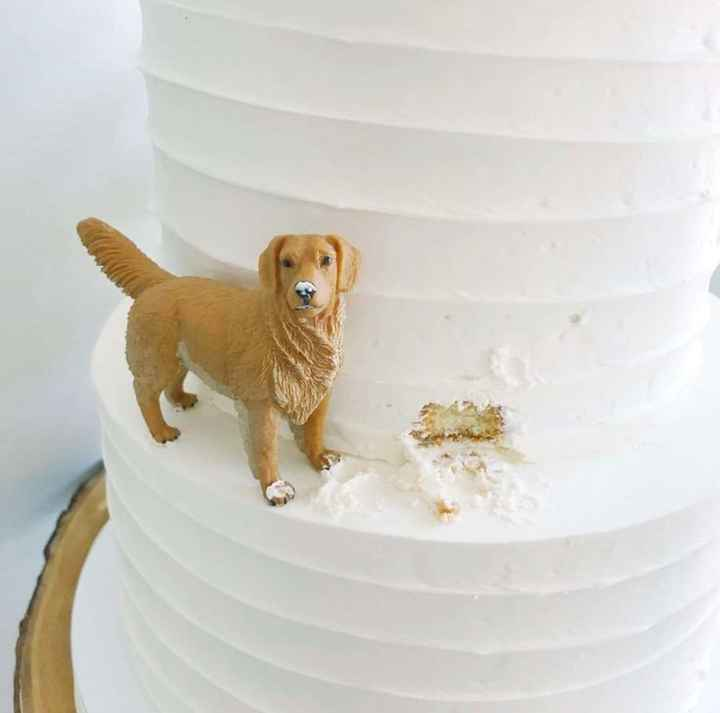 Are You Including Your Pets In Your Wedding? 🐶🐱 - 3