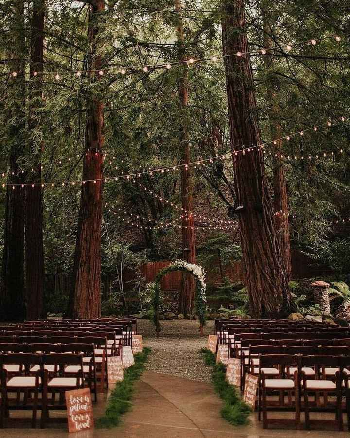 Forest Weddings:  Let's See Your Style Inspiration Pictures! 🌲📷 1